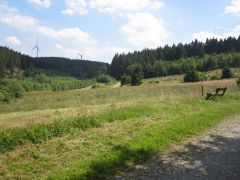 Eifel_Nationalpark 087
