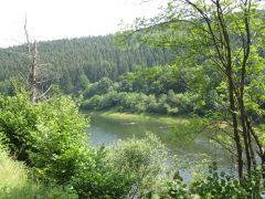 Eifel_Nationalpark 088