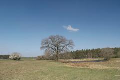 2011_04_09_-_12_50_42_Wittenberg-Belzig