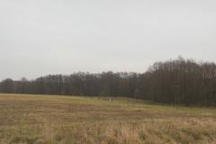 2011_11_26_-_12-55-54 Br_ck-Belzig