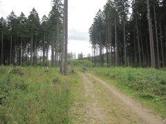 Erbeskopfmarathon 2011 035