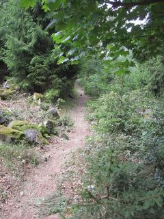 Erbeskopfmarathon 2011 038