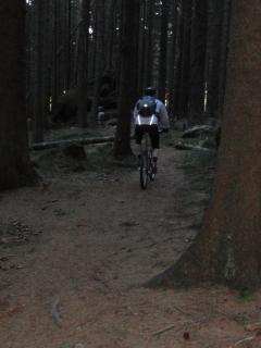 La Palma Feb_14_Harz 280