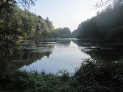 Pfalz2014 035