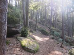 Pfalz2014 046