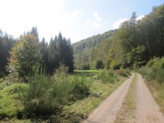 Pfalz2014 047