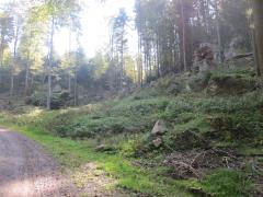 Pfalz2014 050