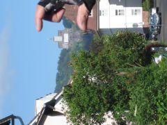 Sommerbiketour2010 005