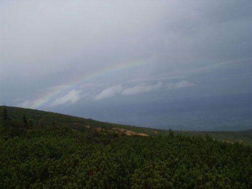 Regenbogen links