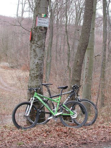 Harz 2006