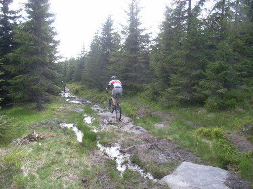 Muschi im Trail