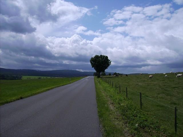 Rheinböllen am Hunsrück