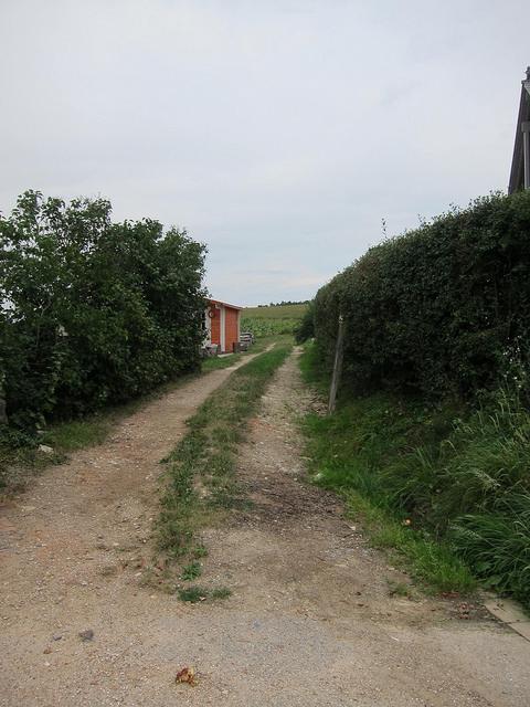 säuleweg1